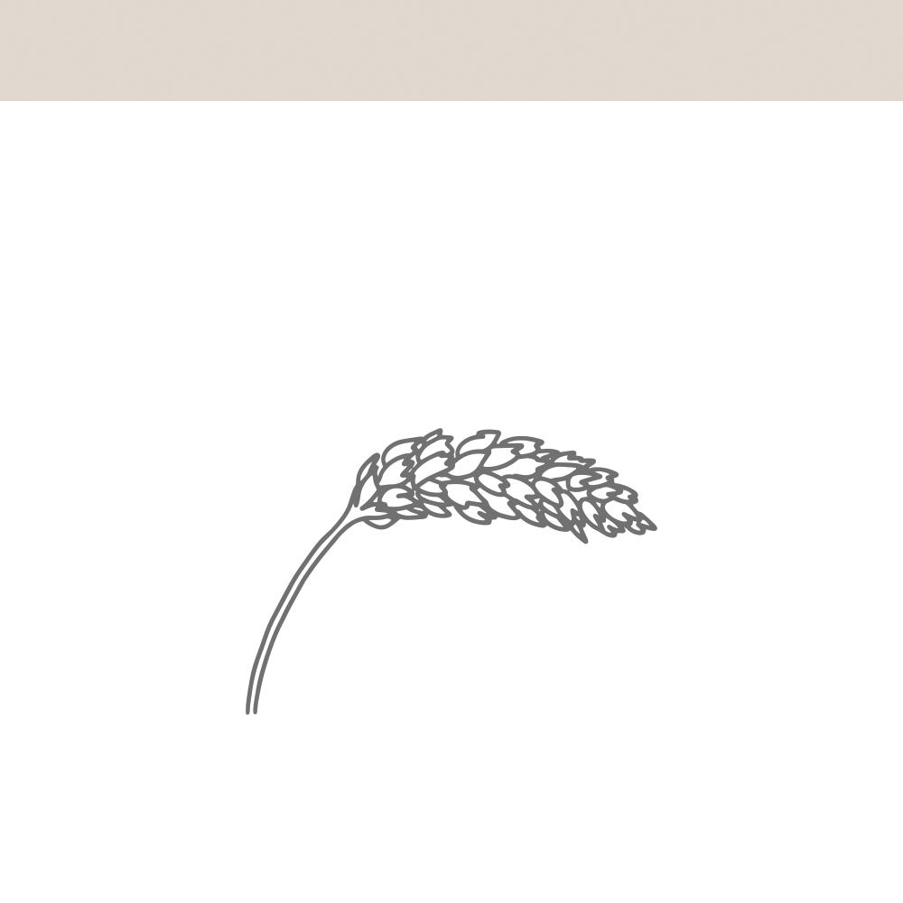 Farine<br>de blé